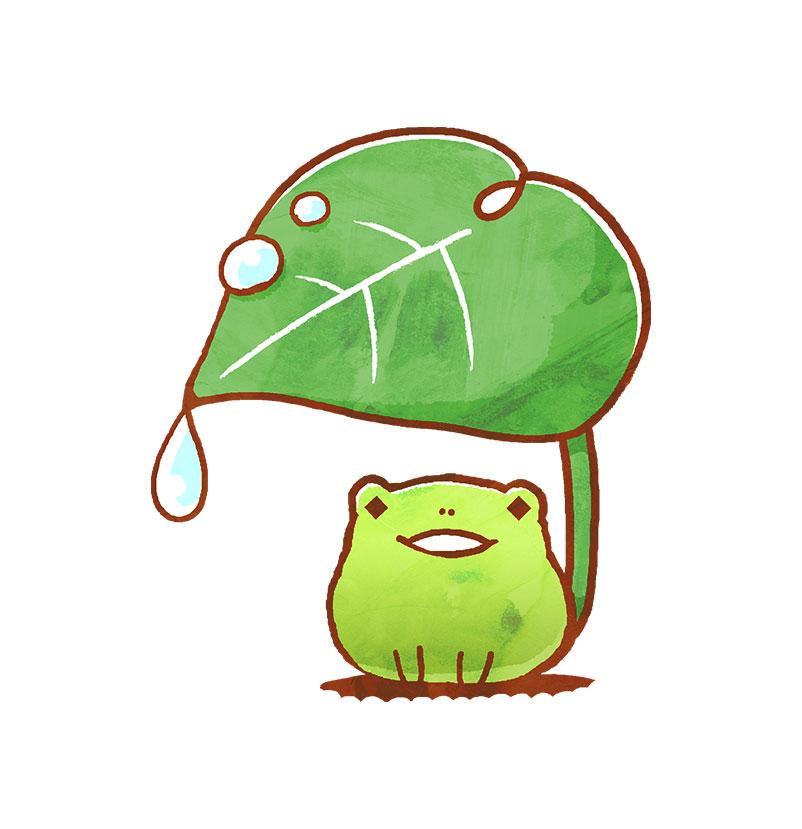 雨宿りするカエル